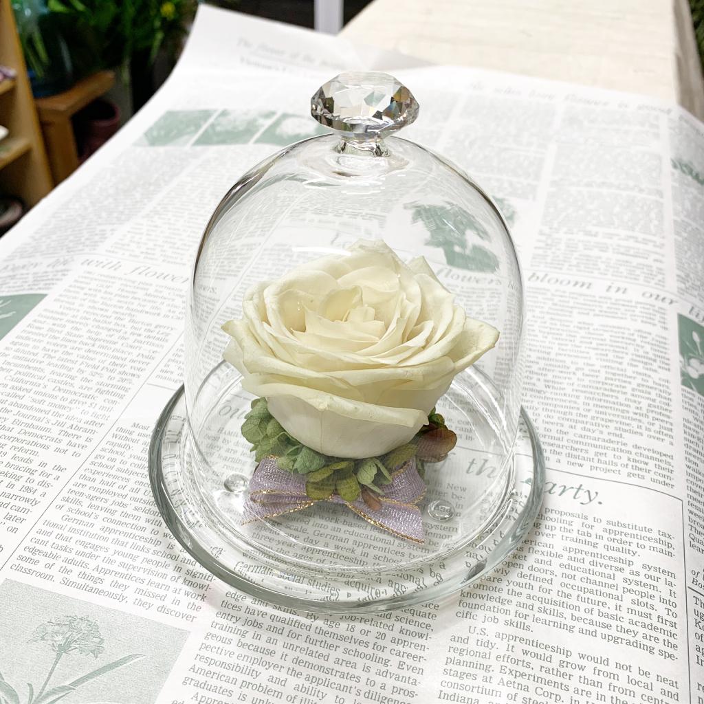 白薔薇のプリザーブドフラワー加工のアレンジ