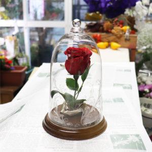 美女と野獣のガラスドームのリボンを使ったバージョン