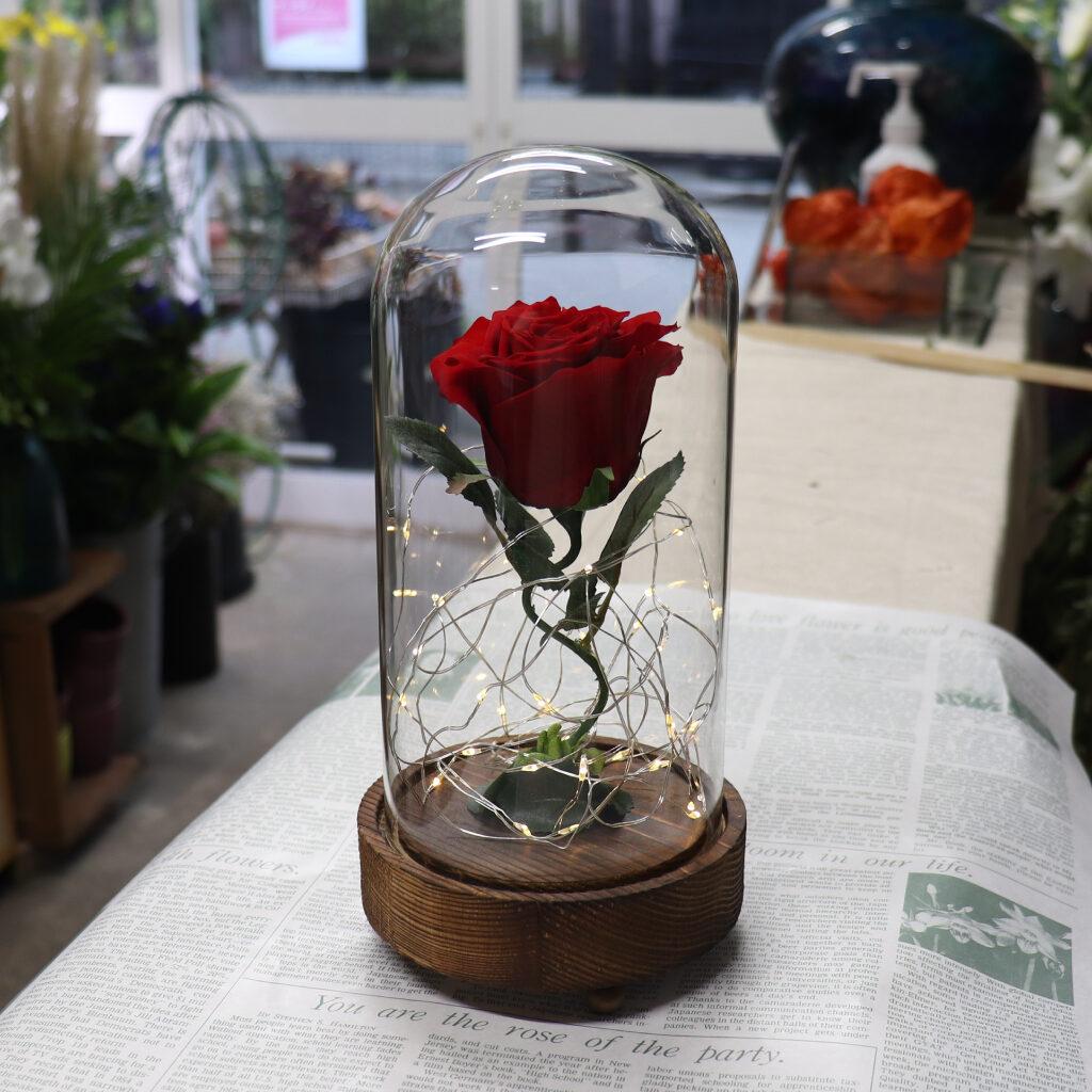 LEDガラスドームの赤薔薇
